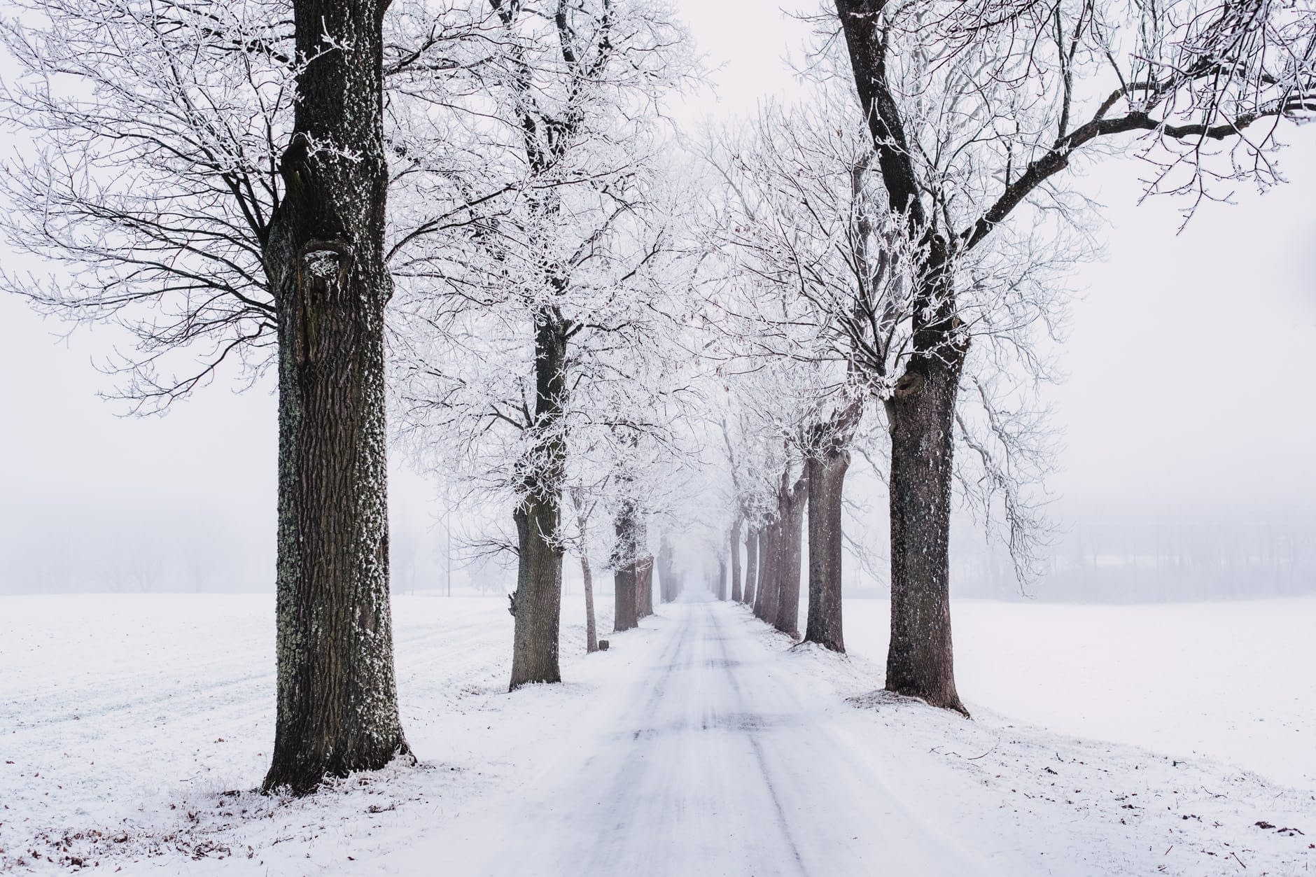 Loneliness and Seasonal Affective Disorder