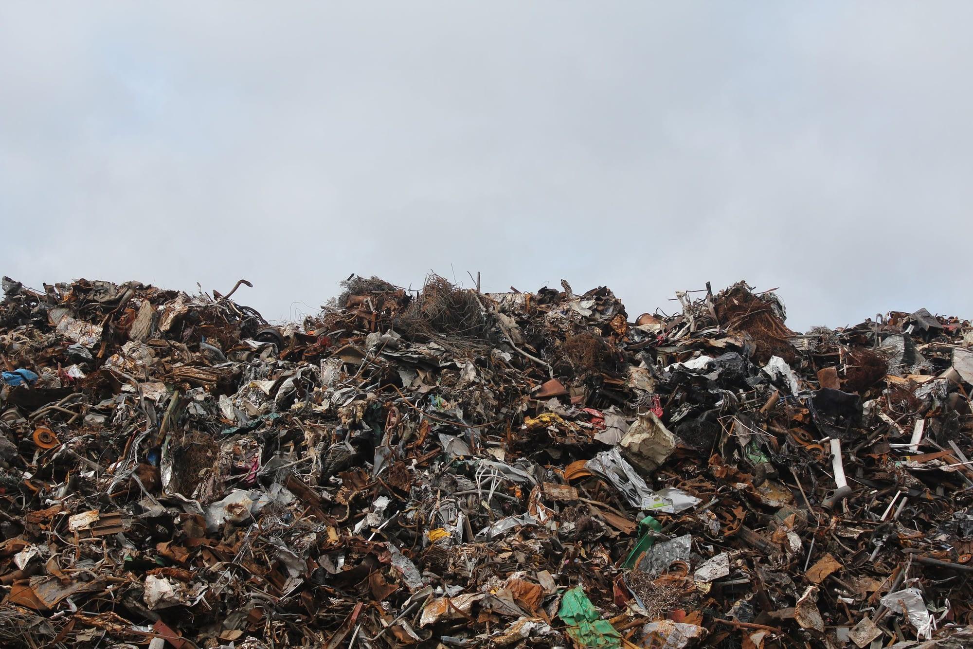 Reducing Food Wastage in Senior Homes