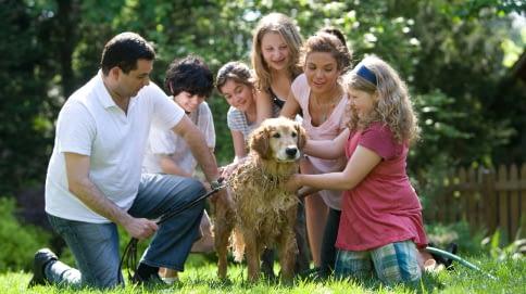 Family Portal Module